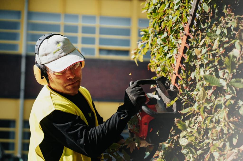 groen onderhoud : haag scheren met een haagschaar op herlaadbare batterijen